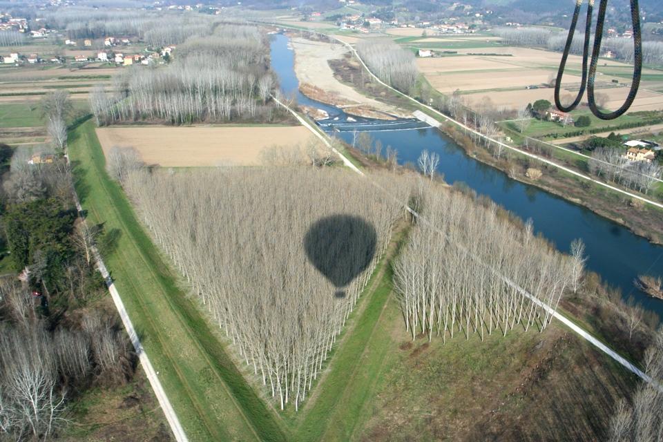 tree triangle near Lucca