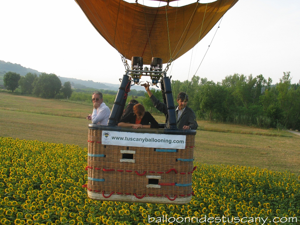 skimming the sunflowers with the hotair balloon